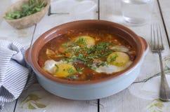 摩洛哥巴巴里人鸡蛋 免版税图库摄影