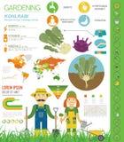 撇蓝,圆白菜白萝卜有利特点图表模板 从事园艺,种田infographic,它怎么增长 平的样式设计 皇族释放例证
