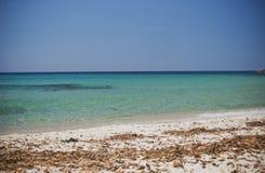 撒丁岛。热带水 库存照片