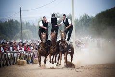 撒丁岛。马和车手 库存图片