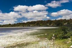 撒丁岛。Giara的高原 免版税库存照片