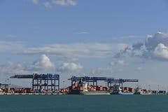 撒丁岛商业端口容器 库存照片