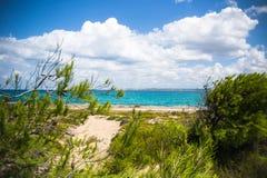 撒丁岛的狂放的海岸 库存照片