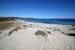 撒丁岛,品柱科米诺岛海滩,在西尼斯科拉疆土  库存照片