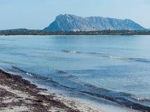 撒丁岛,意大利晴朗的白色海滩有海岛看法  免版税库存照片