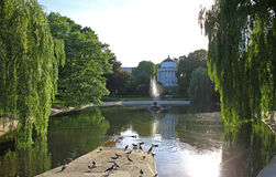 撒克逊人的庭院-公园在华沙,波兰的市中心 库存照片