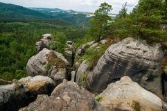 撒克逊人的瑞士国家公园岩石和绿色树环境美化 免版税库存图片