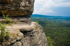 撒克逊人的瑞士国家公园岩石和绿色树环境美化 库存图片