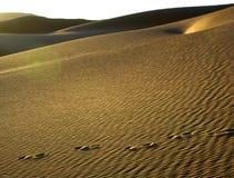 撒哈拉大沙漠沙子结构 免版税图库摄影