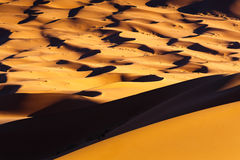 撒哈拉大沙漠沙子 免版税图库摄影