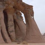 撒哈拉大沙漠的看法 免版税库存图片