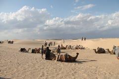 撒哈拉大沙漠突尼斯, Ghlissia吉比利 免版税图库摄影