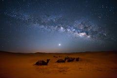 撒哈拉大沙漠银河 免版税库存照片