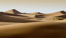 撒哈拉大沙漠,摩洛哥的沙丘 免版税库存图片