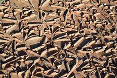 撒哈拉大沙漠-尔格Chebbi 库存图片