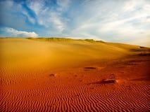 撒哈拉大沙漠 免版税图库摄影