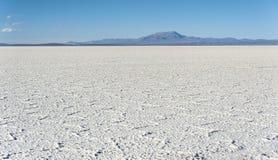 撒拉族de Uyuni是最大的盐平在世界联合国科教文组织世界遗产名录站点- Altiplano,玻利维亚 免版税库存照片