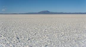 撒拉族de Uyuni是最大的盐平在世界联合国科教文组织世界遗产名录站点- Altiplano,玻利维亚 免版税库存图片