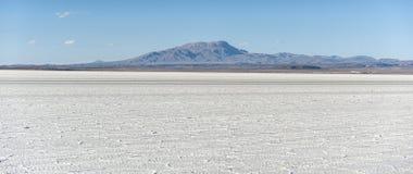 撒拉族de Uyuni是最大的盐平在世界联合国科教文组织世界遗产名录站点- Altiplano,玻利维亚 库存照片