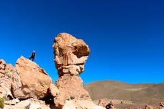 撒拉族de Uyuni沙漠 免版税库存照片