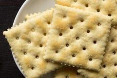 撒盐饼干薄脆饼干 库存图片