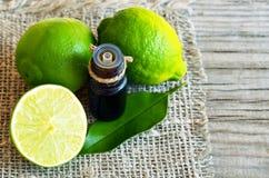撒石灰在玻璃瓶和新鲜的成熟石灰果子的精油 温泉、芳香疗法和bodycare的酸橙油 免版税库存图片