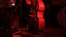 播放低音提琴的人 影视素材