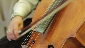 播放低音提琴的人 股票视频
