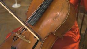 播放在乐队的妇女低音提琴 影视素材