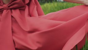 播种的框架慢动作射击,从走一个的女孩的后面一个看法的特写镜头有弓的一件明亮的礼服的  股票视频