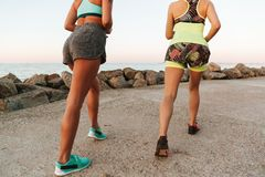 播种观看准备两名的妇女的图象跑 图库摄影