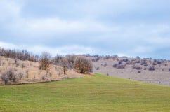 播种领域在与多云天气的小山区域 图库摄影