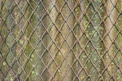 操刀的铁丝网 老板岩 免版税库存照片