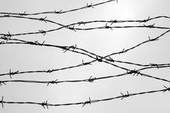 操刀 有刺的范围电汇 让 监狱 刺 封锁 一个囚犯 浩劫集中营 囚犯 免版税图库摄影