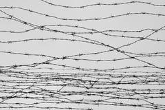 操刀 有刺的范围电汇 让 监狱 刺 封锁 一个囚犯 浩劫集中营 囚犯 免版税库存图片