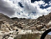 攀岩在公园 免版税库存图片