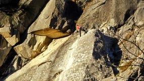 攀岩运动员 图库摄影