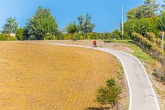 攀登的资深骑自行车者通过被犁的领域 免版税库存照片