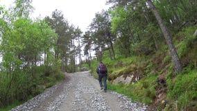 攀登路的远足者游人导致布道台讲坛岩石在挪威 股票录像