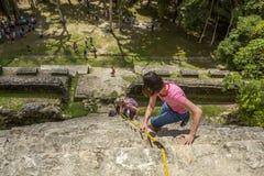 攀登下来玛雅高寺庙的游人在Lamanai,伯利兹 免版税图库摄影