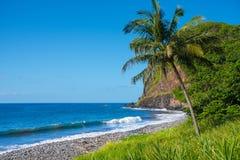 支持在毛伊,夏威夷南海岸  图库摄影