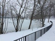 支持河的冬天树 免版税库存图片