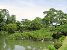 支持的树枝在Kenrokuen庭院池塘 免版税库存图片