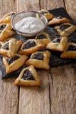 支持的Hamentashen, Ozen Haman,犹太hol的普珥节曲奇饼 图库摄影