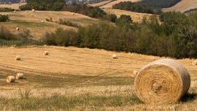 收割期:与干草捆的农业风景 库存图片