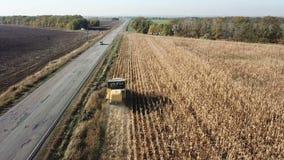收割机取消在领域的玉米 股票视频