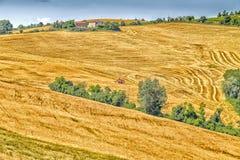 收割机机器收割麦子 免版税图库摄影