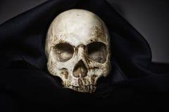 收割机特写镜头照片的头骨 免版税库存照片