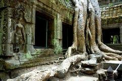 收割siem寺庙 免版税图库摄影