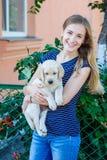 收留白色拉布拉多小狗的妇女 库存图片